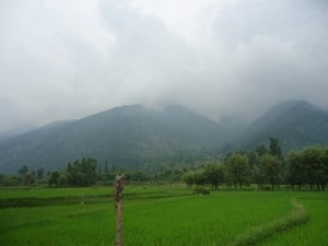 Kashmir Valley Tours