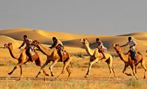 Tipical Rajasthan Tours